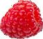 Click to go to http://www.plantsciences.com/es/cms/3/315/mejoramiento/
