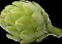 Click to go to http://www.plantsciences.com/es/cms/3/314/mejoramiento/